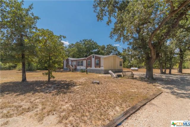 980 Plant Road, Luling, TX 78648 (MLS #357611) :: Erin Caraway Group