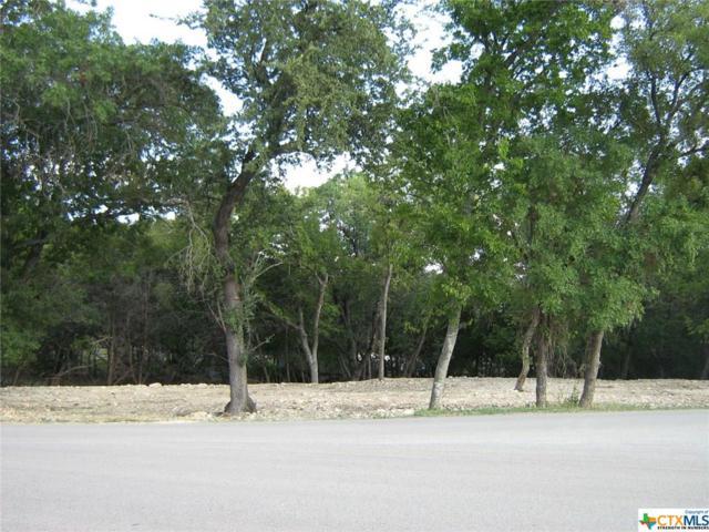 42 Tanyard, Morgan's Point Resort, TX 76513 (MLS #357699) :: Vista Real Estate