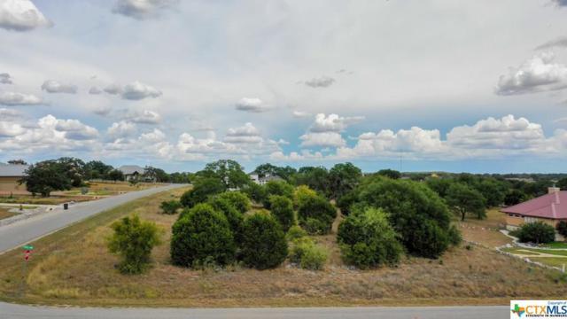 946 Cross Oak, New Braunfels, TX 78132 (MLS #357873) :: Magnolia Realty