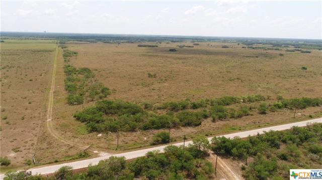 1981 Franke Rd., Goliad, TX 77963 (MLS #357915) :: Kopecky Group at RE/MAX Land & Homes