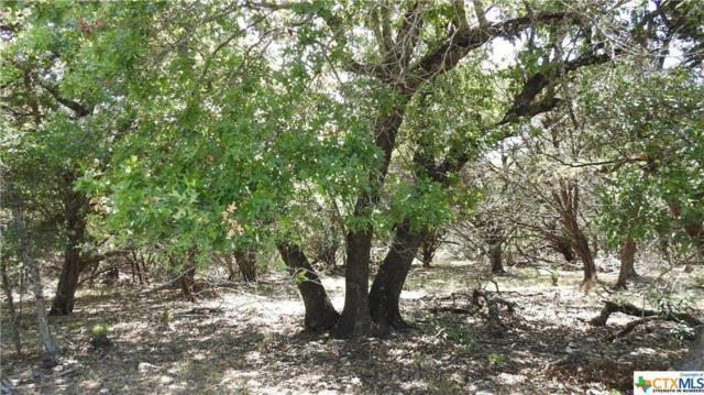 16107 Charlya Drive, Temple, TX 76502 (MLS #358142) :: Magnolia Realty