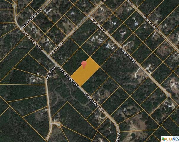 359 Ash Juniper, New Braunfels, TX 78132 (MLS #358228) :: Magnolia Realty