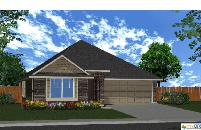4496 Wingd Elm Street, Schertz, TX 78108 (MLS #358240) :: The Suzanne Kuntz Real Estate Team