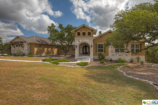 1362 Merlot, New Braunfels, TX 78132 (MLS #358462) :: Magnolia Realty
