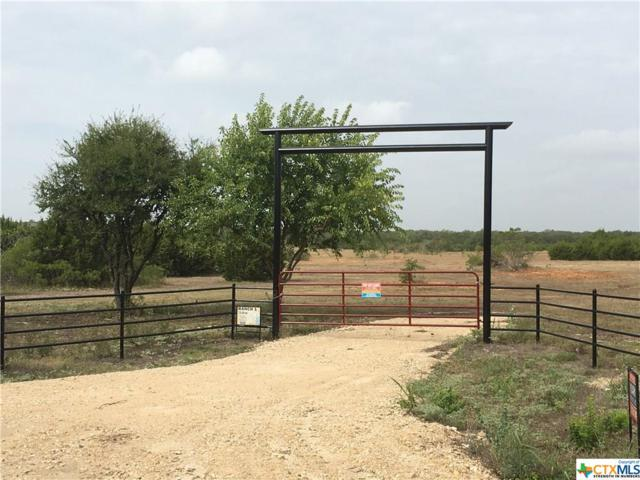2271 Cr 226, Florence, TX 76527 (MLS #358465) :: Magnolia Realty