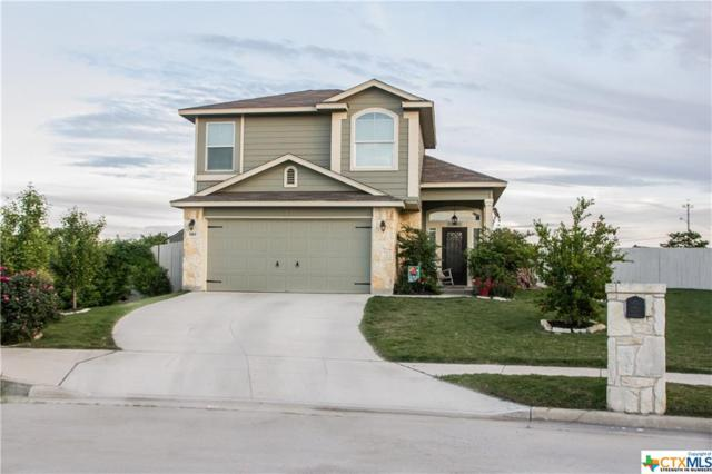 989 Lauren Street, New Braunfels, TX 78130 (MLS #358792) :: The Suzanne Kuntz Real Estate Team