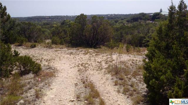 158 Stallion Estates Drive, Spring Branch, TX 78070 (MLS #358800) :: Magnolia Realty