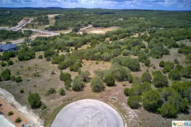 1125 Presidio, Canyon Lake, TX 78133 (#358816) :: Realty Executives - Town & Country