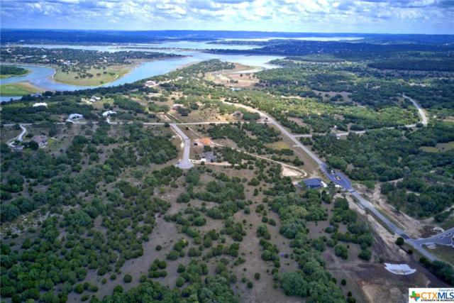 1129 Presidio, Canyon Lake, TX 78133 (#358820) :: Realty Executives - Town & Country