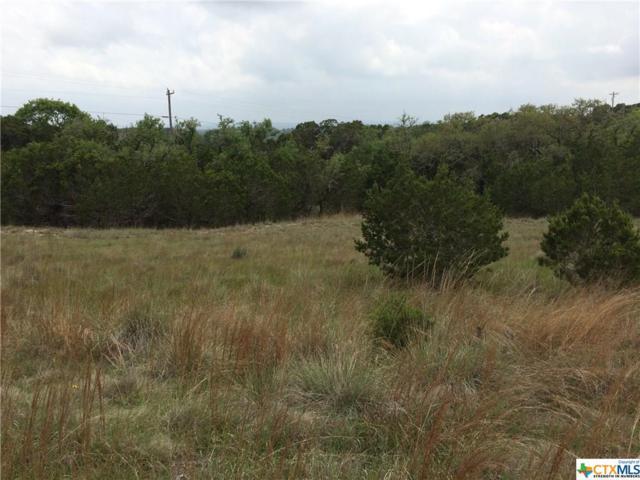 948 Primrose Path, Canyon Lake, TX 78133 (MLS #359105) :: Magnolia Realty