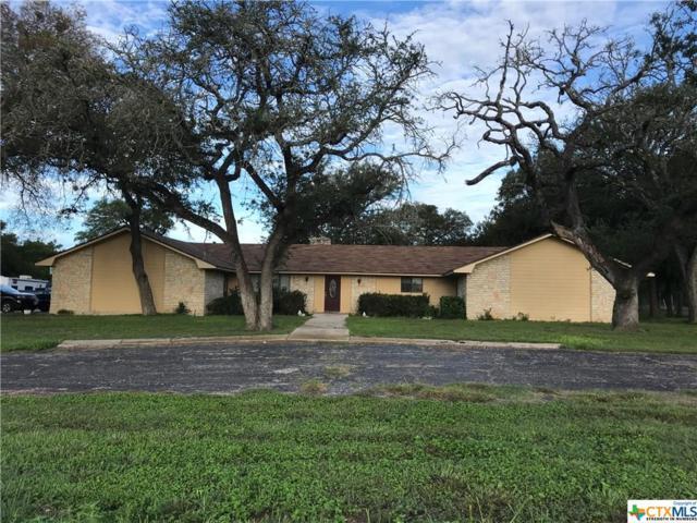 5204 State Highway 317 Highway, Belton, TX 76513 (MLS #359295) :: Magnolia Realty