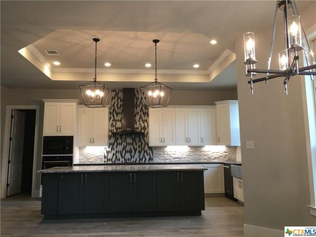 507 Long Ridge, Spring Branch, TX 78070 (MLS #359309) :: Erin Caraway Group