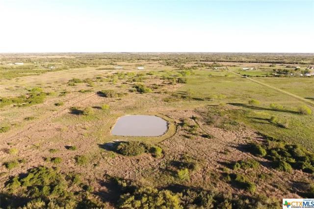 000 Gates Road, Seadrift, TX 77983 (MLS #359380) :: RE/MAX Land & Homes