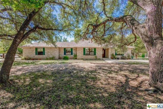 175 Wagon Trail, Lampasas, TX 76550 (MLS #359434) :: Berkshire Hathaway HomeServices Don Johnson, REALTORS®