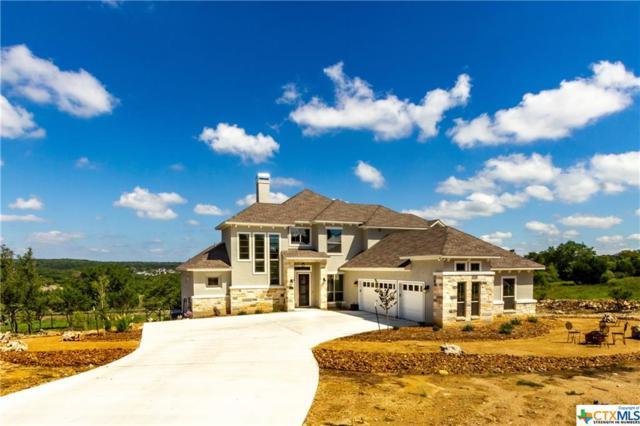 1420 Strada Curva, New Braunfels, TX 78132 (MLS #359473) :: The Suzanne Kuntz Real Estate Team