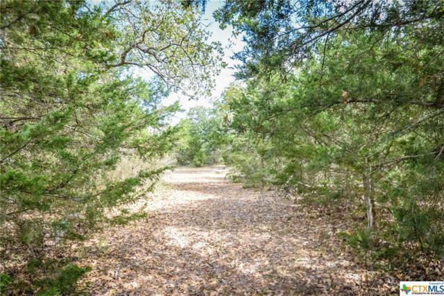 000 Old Waelder Road, Flatonia, TX 78941 (MLS #359530) :: Berkshire Hathaway HomeServices Don Johnson, REALTORS®