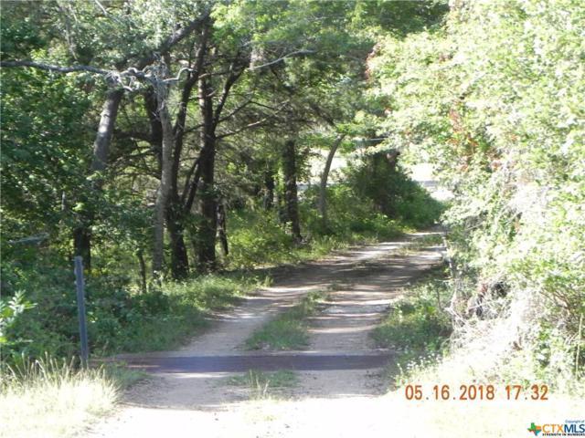 2897 Us Highway 90A, Hallettsville, TX 77964 (MLS #359563) :: RE/MAX Land & Homes