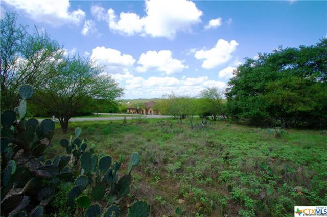 1126 Shady, New Braunfels, TX 78132 (MLS #359582) :: Magnolia Realty
