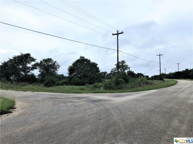 163 Stargrass, Spring Branch, TX 78070 (MLS #359599) :: Magnolia Realty