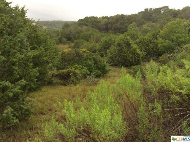 182 Prairie Tea Lane, Canyon Lake, TX 78133 (MLS #359685) :: RE/MAX Land & Homes