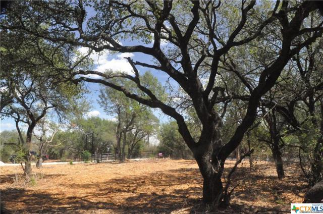 300 Cr 220, Florence, TX 76527 (MLS #359714) :: RE/MAX Land & Homes