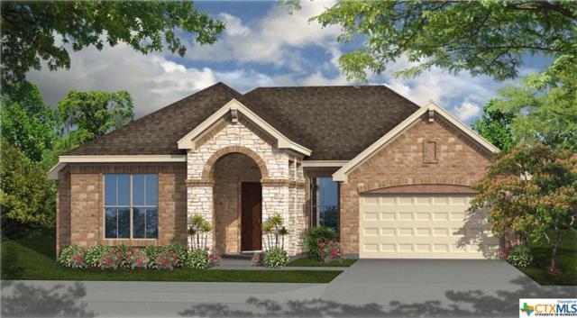 1153 Nutmeg Trail, New Braunfels, TX 78132 (MLS #359722) :: Erin Caraway Group