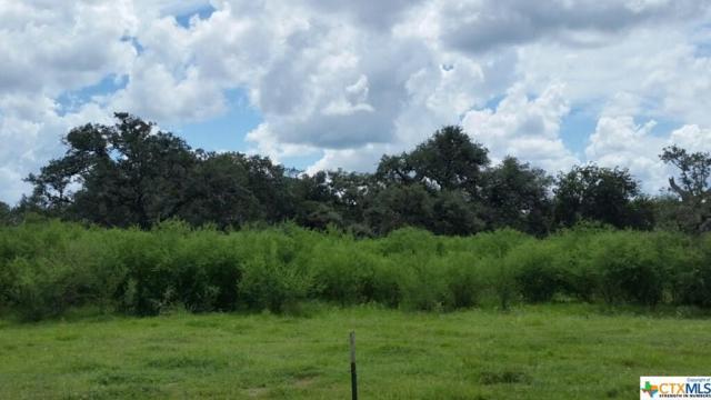 0 Old Yorktown Rd., Cuero, TX 77954 (MLS #359734) :: RE/MAX Land & Homes