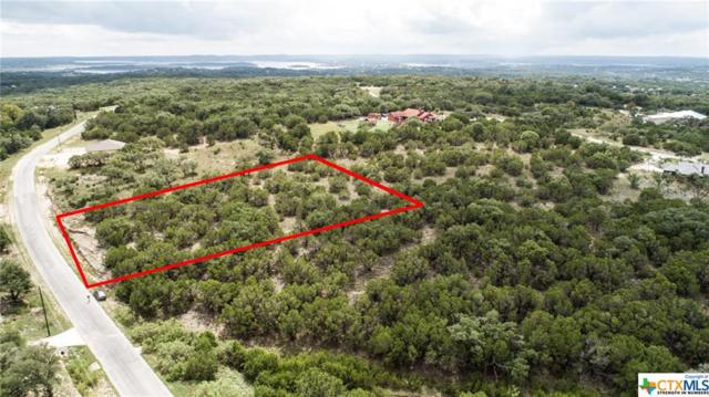 256 Kellog, Fischer, TX 78623 (MLS #359742) :: RE/MAX Land & Homes