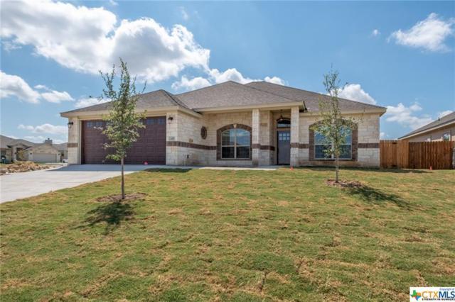 416 Western Sky, Jarrell, TX 76537 (MLS #359760) :: RE/MAX Land & Homes