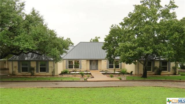 736 Willow Ridge, San Marcos, TX 78666 (MLS #359788) :: RE/MAX Land & Homes