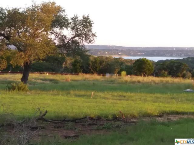 1650 Lake Ridge Boulevard, Canyon Lake, TX 78133 (MLS #359966) :: Magnolia Realty