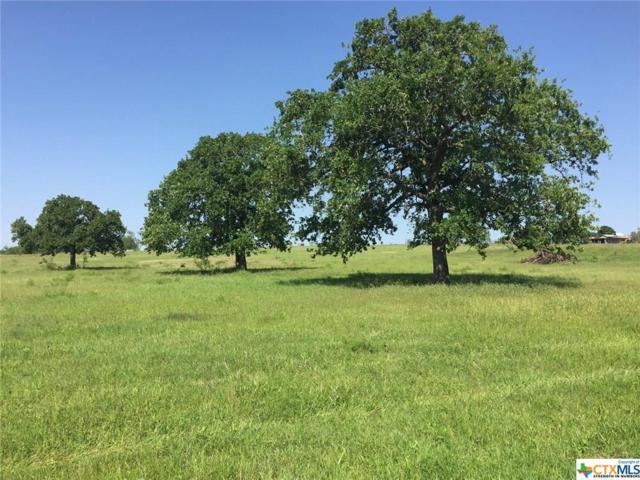 3491 Washburn Rd, Luling, TX 78648 (MLS #360010) :: Magnolia Realty