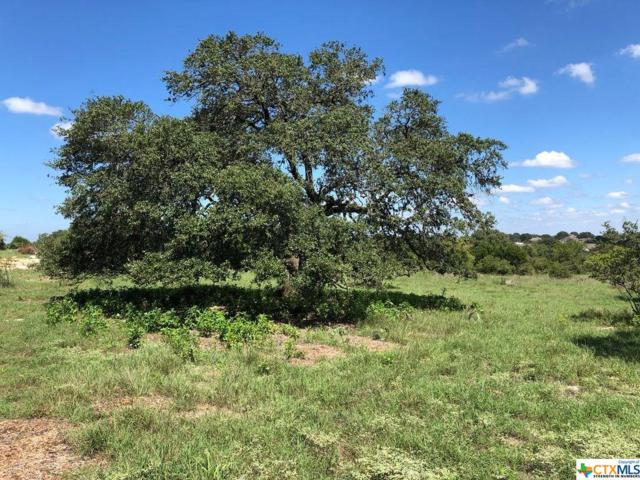 1630 Vintage Way, New Braunfels, TX 78132 (MLS #360099) :: The Suzanne Kuntz Real Estate Team