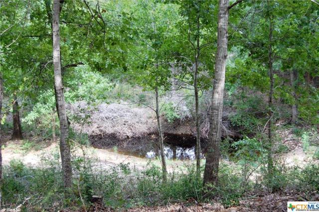 920 Spanish Oaks, Lockhart, TX 78644 (MLS #360281) :: Magnolia Realty