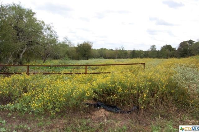 970 Spanish Oaks, Lockhart, TX 78644 (MLS #360291) :: Magnolia Realty