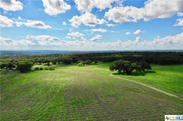 TBD Fm 2341, Burnet, TX 78611 (MLS #360444) :: RE/MAX Land & Homes