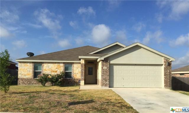 2806 Alamocitos Creek, Killeen, TX 76549 (MLS #360449) :: Vista Real Estate
