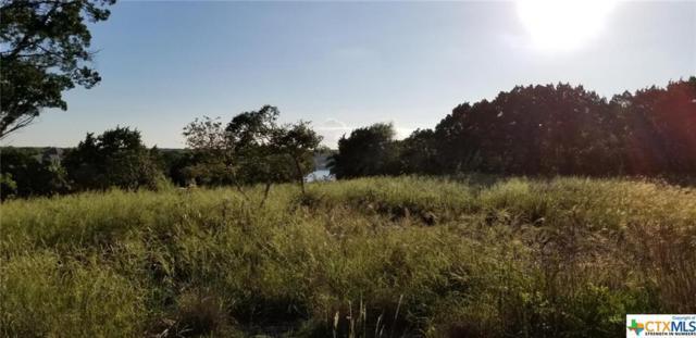 5051 Comanche Drive, Temple, TX 76502 (MLS #360502) :: Magnolia Realty