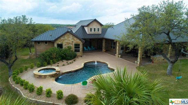 310 Windmill Ranch Road, Georgetown, TX 78633 (MLS #360531) :: Magnolia Realty