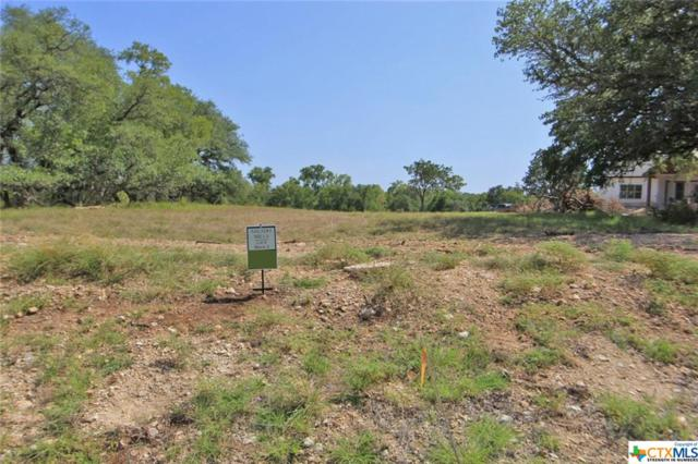 2023 T.H. Jones Mill Way, Salado, TX 76571 (MLS #360582) :: Magnolia Realty