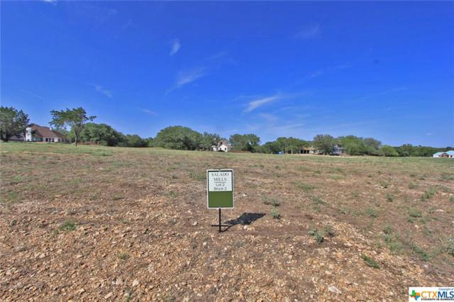 1015 Ferguson Mill Road, Salado, TX 76571 (MLS #360592) :: Magnolia Realty