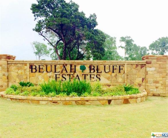 8123 Jericho Bluff, Belton, TX 76513 (MLS #360594) :: Erin Caraway Group