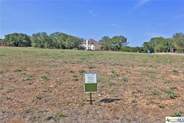 00 Ferguson Mill Road, Salado, TX 76571 (MLS #360705) :: Magnolia Realty