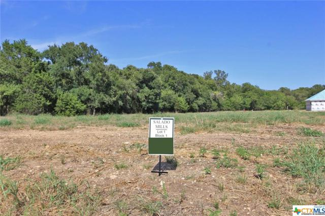 2010 Chalk Mill Crossing, Salado, TX 76571 (MLS #360718) :: Magnolia Realty