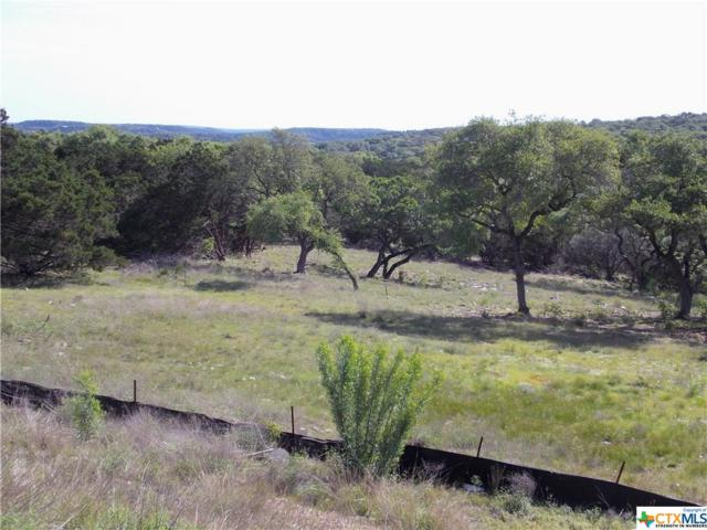 1430 Robusto, New Braunfels, TX 78132 (MLS #360805) :: Magnolia Realty