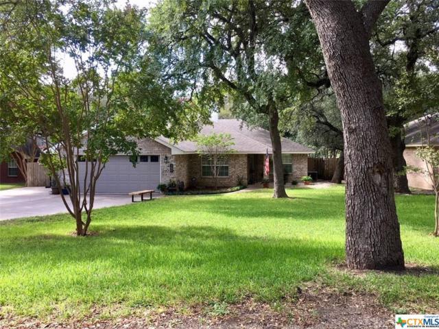 746 Benchmark Trail, Belton, TX 76513 (MLS #360833) :: Vista Real Estate