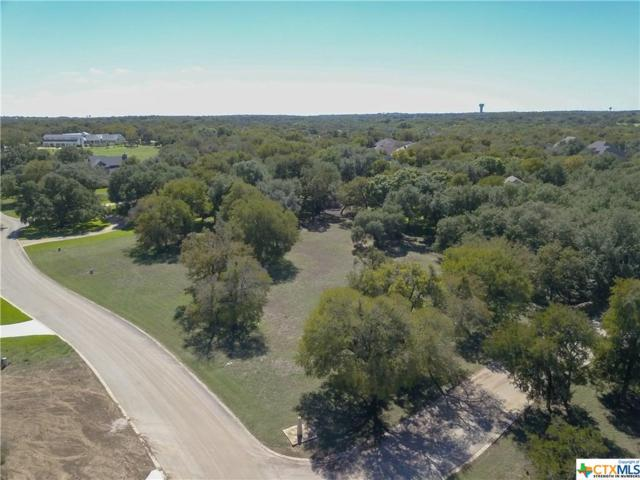 1661 Running Creek, Salado, TX 76571 (MLS #360859) :: Vista Real Estate