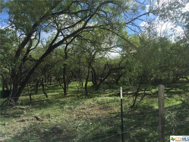 2100 Fm 2984, Luling, TX 78648 (MLS #360913) :: Magnolia Realty
