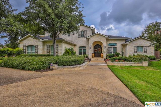 2303 Canyon Springs Drive, Belton, TX 76513 (MLS #361048) :: Vista Real Estate