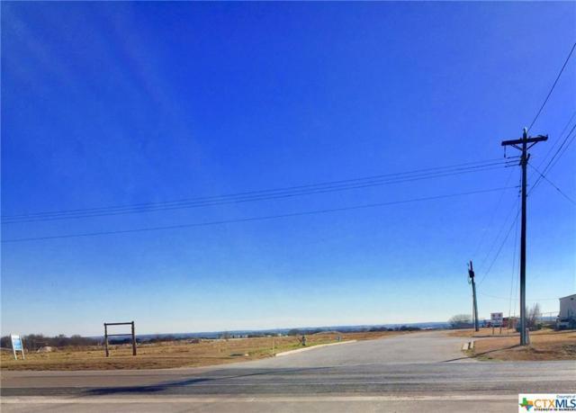 703 W Loop 121 Loop, Belton, TX 76513 (MLS #361120) :: Vista Real Estate